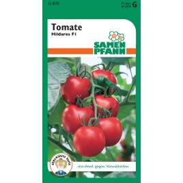 Tomate Hildares F1 (G)